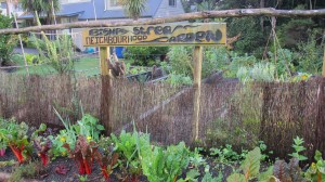 Bishop Stream Community Garden