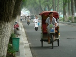 a man pedals an empty tri-shaw along a tree lined street. Mopeds approach from behind